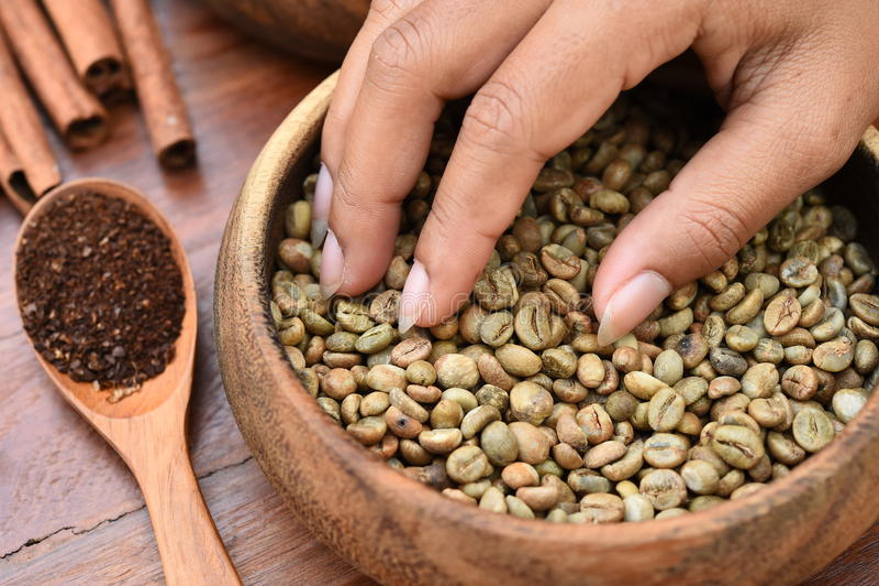 Kawowe fasole z cynamonowymi kijami i zmieloną kawą w drewnianej łyżce fotografia royalty free