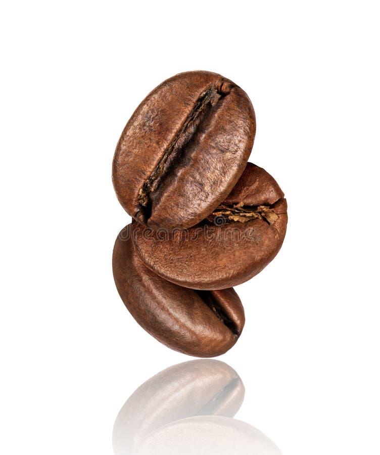 Kawowe fasole z odbicia zbliżeniem, odizolowywającym na bielu obraz royalty free