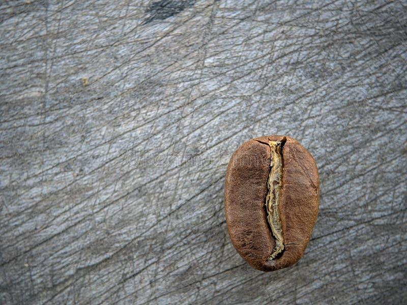 Kawowe fasole zamknięte w górę szarej drewno deski na zdjęcie royalty free