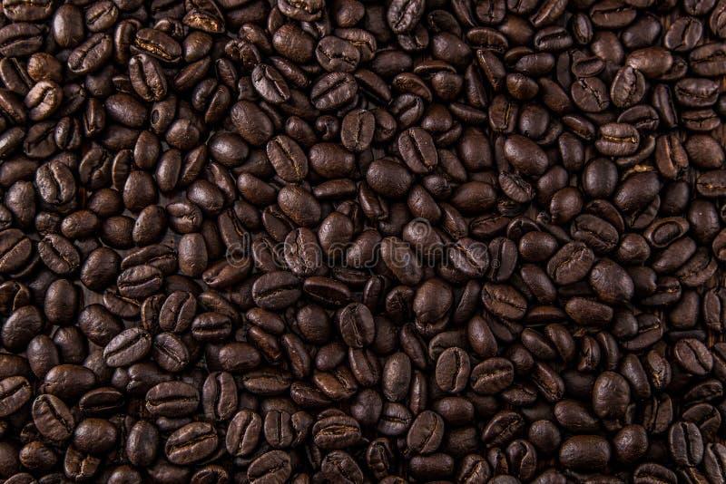Kawowej fasoli tła tekstura obraz royalty free