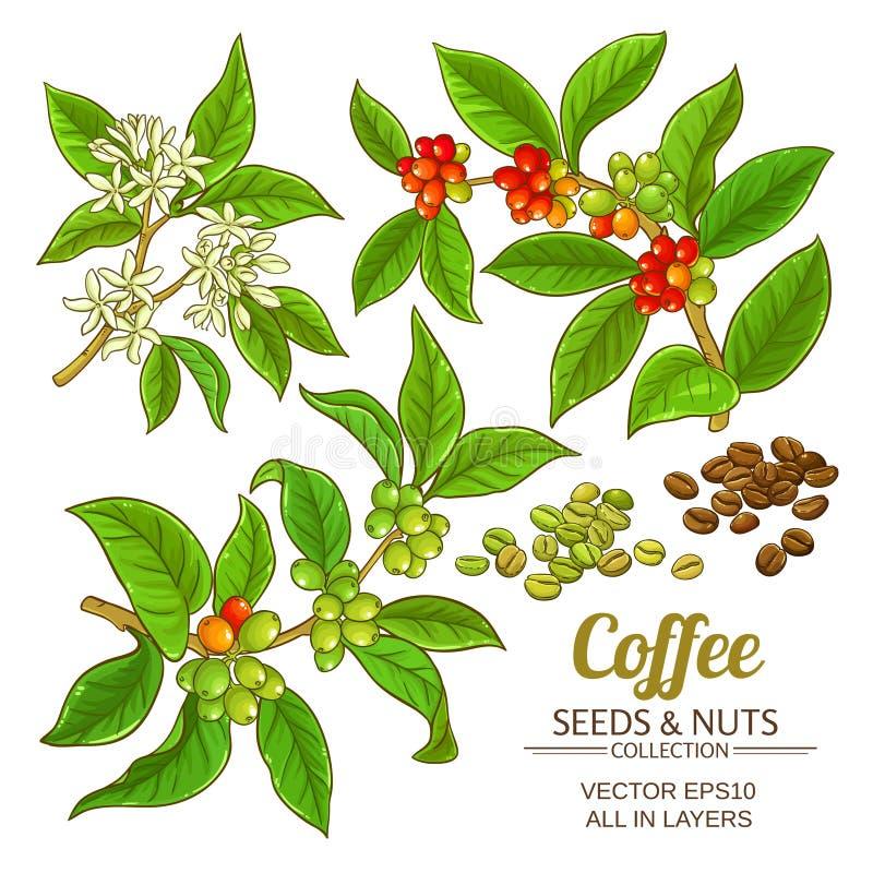 Kawowy wektoru set royalty ilustracja