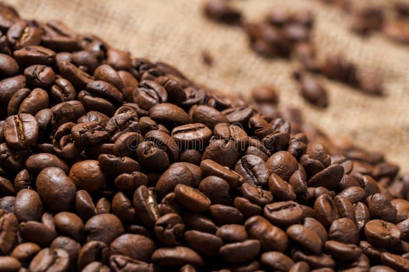Kawowych fasoli bokeh zdjęcia royalty free