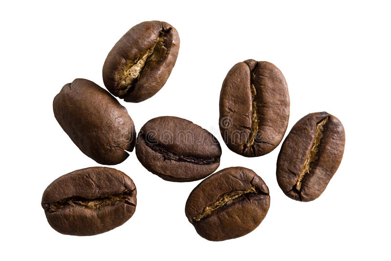 Kawowych fasoli odosobniony zbliżenie zdjęcie royalty free