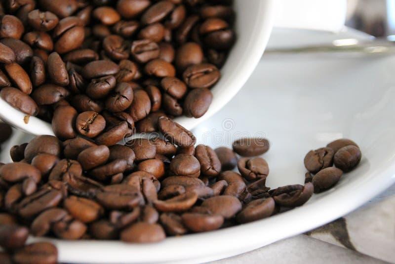 Kawowych kaw espresso fasoli zamknięty up zdjęcia royalty free