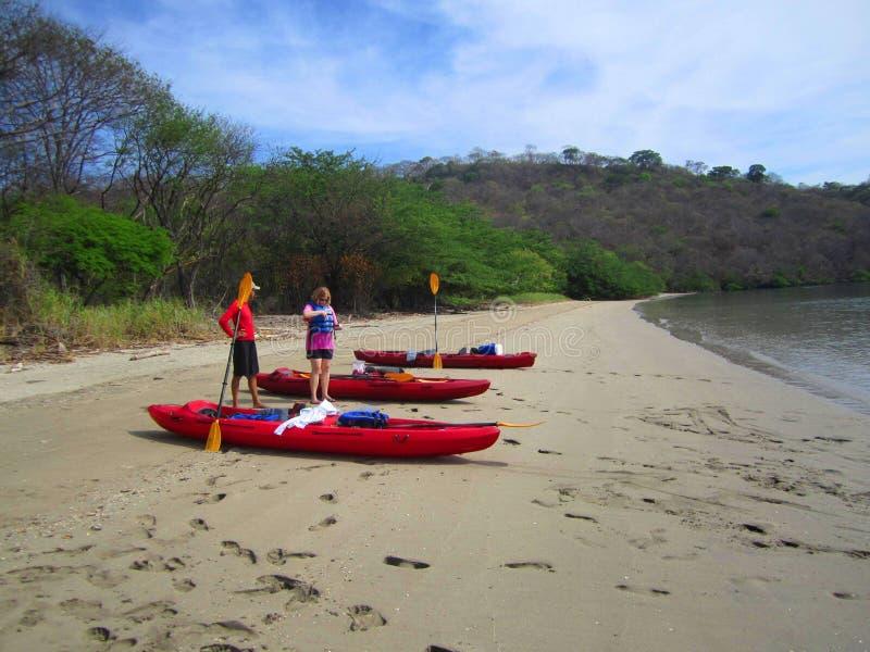 Kayack в Коста-Рика, экологическом туризме стоковая фотография rf