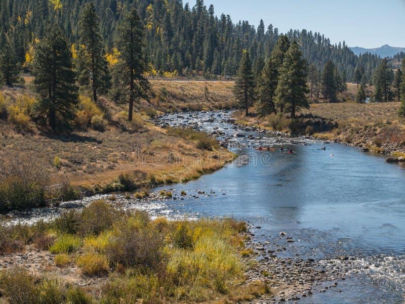 Kayak fahren auf dem Truckee lizenzfreie stockfotografie
