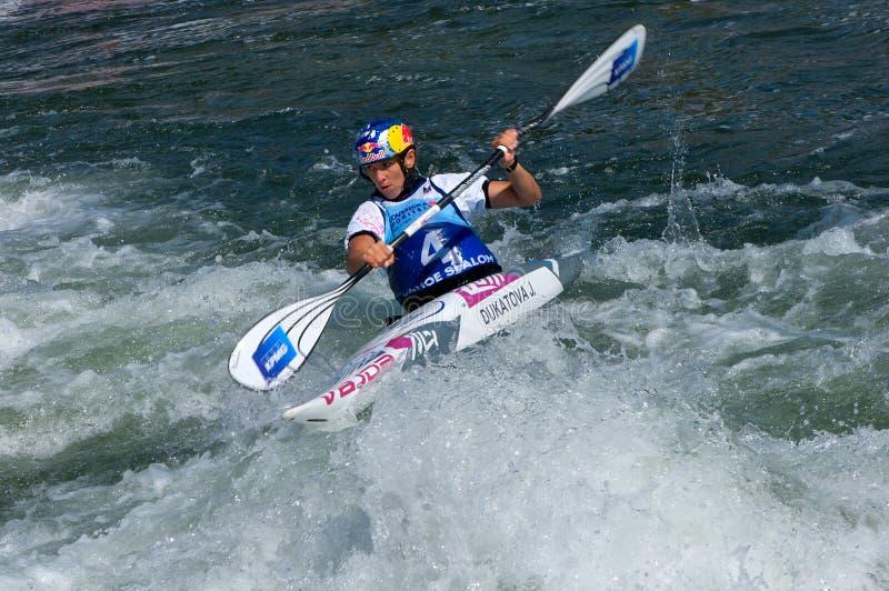 Kayak na corredeira - medalhista de ouro - Dukatova fotografia de stock royalty free