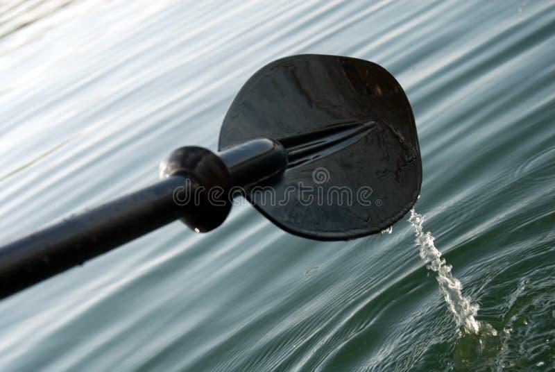 Kayak paddle royalty free stock photos