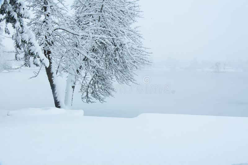 Kayak in the Snow Storm royalty free stock image