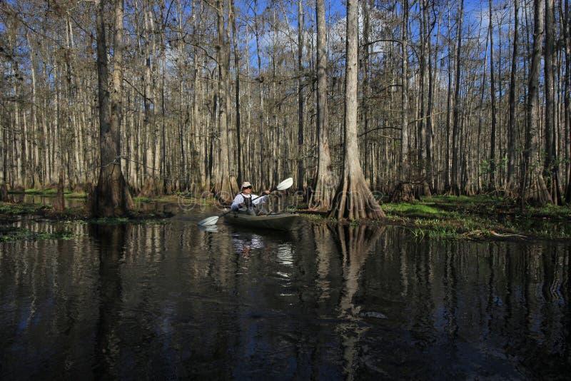 Kayaker na Fisheating zatoczce, Floryda zdjęcia royalty free