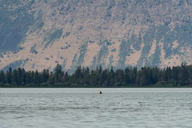 Kayaker paddling on Klamath Lake in Southern Oregon. A lone man in kayak makes his way across Klamath Lake near Klamath Falls, Oregon. The lake is known as one stock photos
