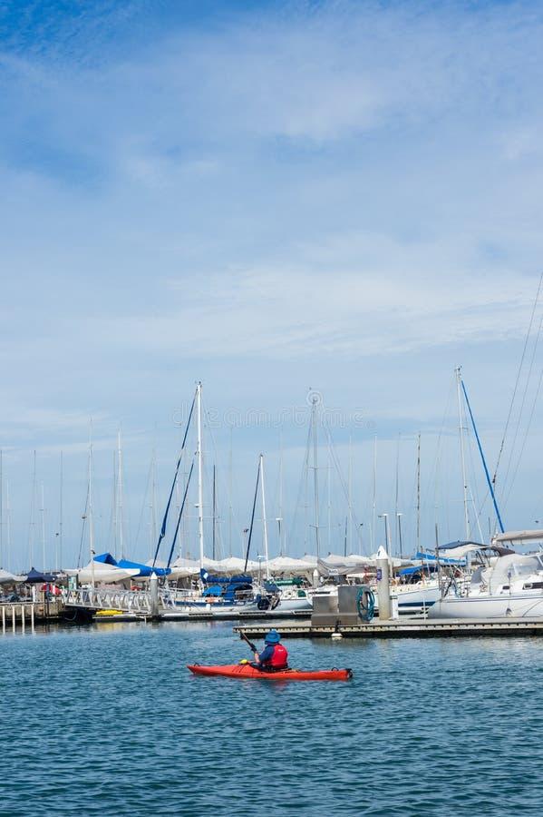 Kayaker paddling past Royal Brighton Yacht Club Marina in Melbourne. royalty free stock images