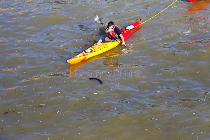 Kayaker que rema através da via navegável poluída Thames River, Londres, Inglaterra fotografia de stock