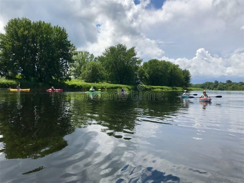 Kayakers στον ποταμό Αγίου John σε Fredericton στοκ φωτογραφία
