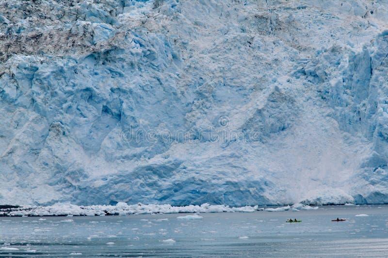 Kayakers приближают к леднику на Prince William Sound, США стоковые фотографии rf