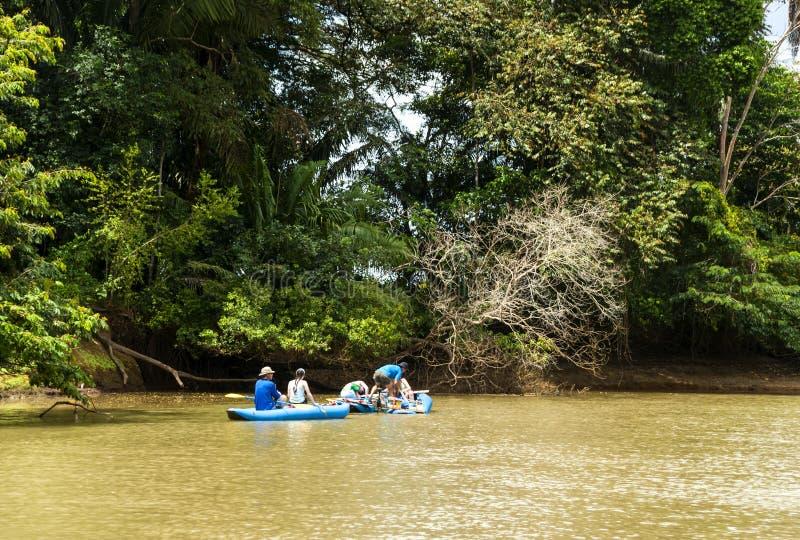 Kayakers στοκ εικόνα