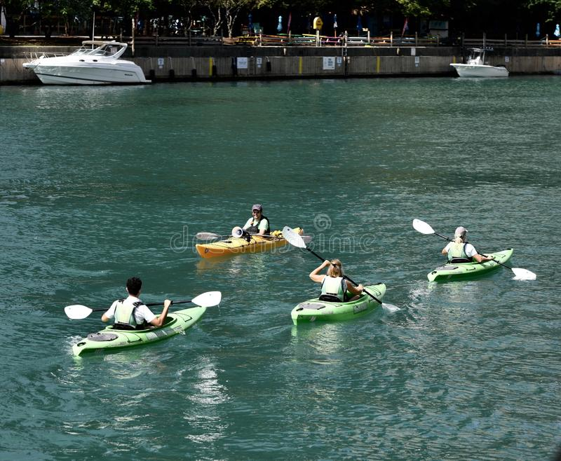 Kayakers on the Chicago River stock image
