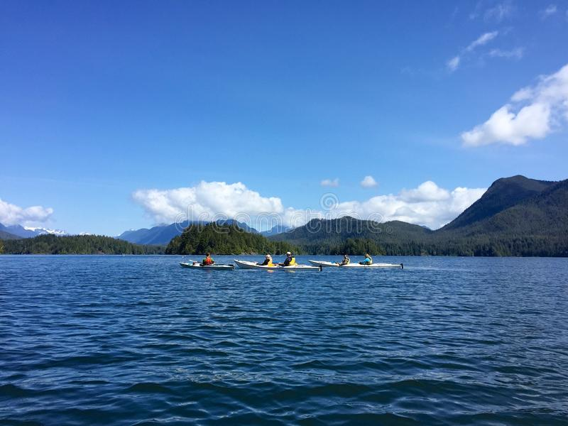 Kayakers no som de Clayoquot perto de Tofino, Columbia Britânica, Canadá imagem de stock royalty free