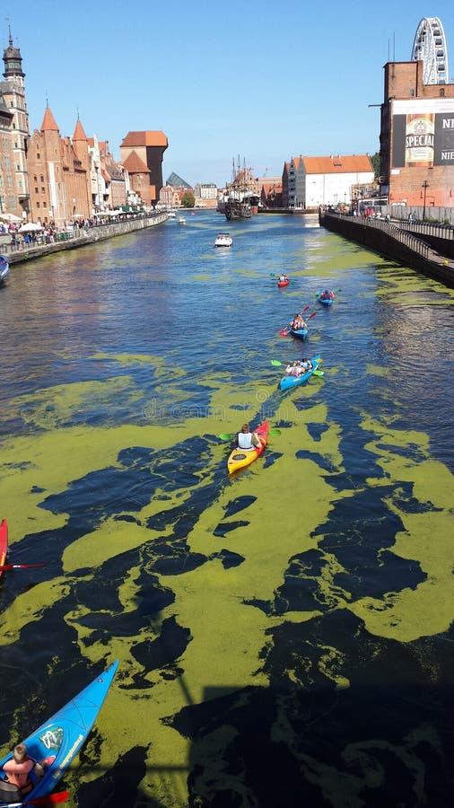 Kayakers på floden Motlawa i Gdansk, Polen royaltyfria bilder