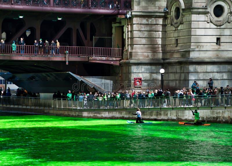 Kayakers paddle wzdłuż Chicagowskiej rzeki zbiera uwagę która jest farbującym zielenią dla St Patrick ` s dnia, fotografia royalty free