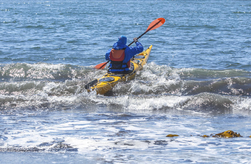 Kayakers on sand coast of Pacific ocean royalty free stock images