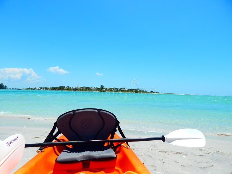 Kayaking adventures in southwest Florida royalty free stock photo