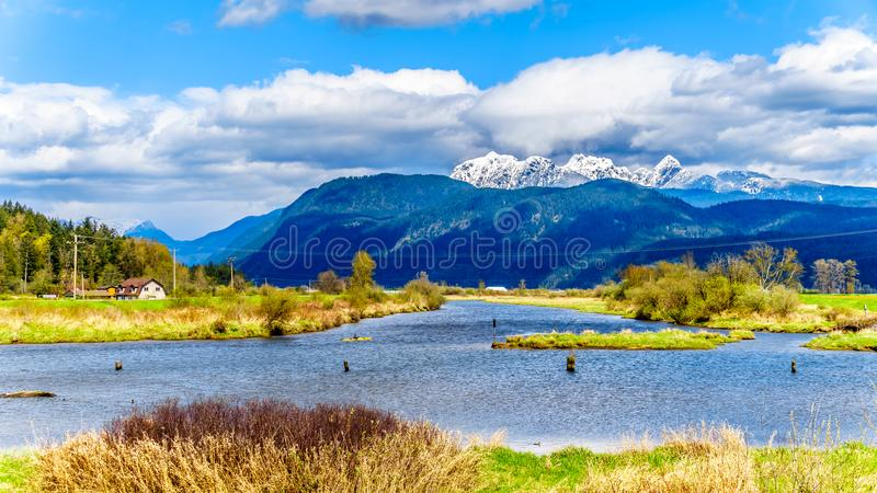 Kayaking on the Alouette River seen from the at the Pitt Polder near Maple Ridge in British Columbia, Canada. With the Golden Ears Mountain in the background royalty free stock image