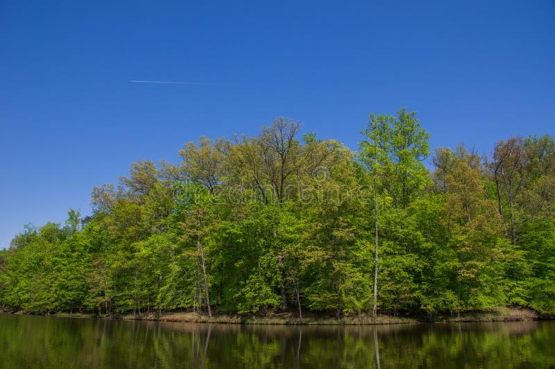 Kayaking at Fountainhead stock photography