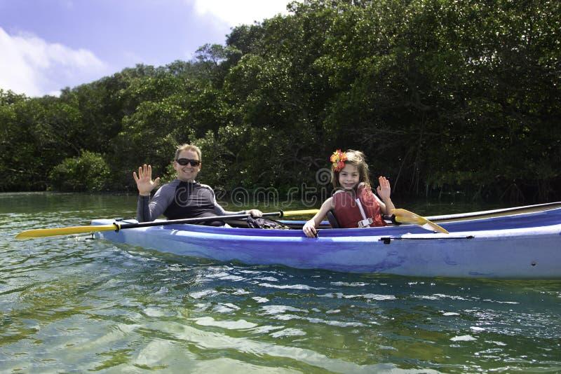 kayaking mangroves för familj arkivfoto