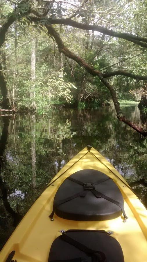 Kayaking o Hillsborough fotografia de stock