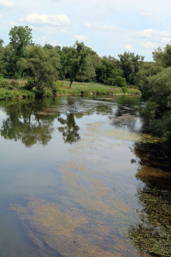 Kayaking Piękna Saugeen rzeka w Hanover, Ontario fotografia stock