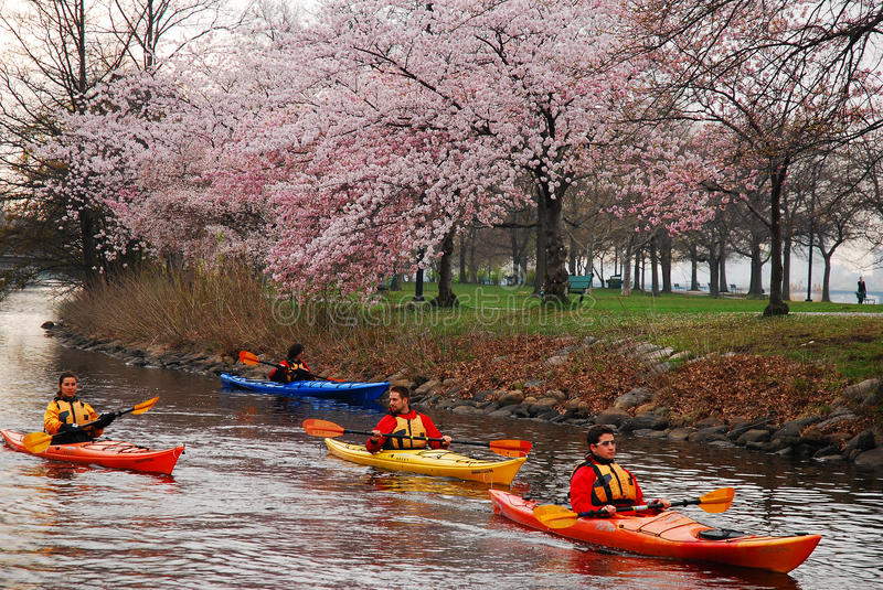Kayaking on a Spring Day stock images