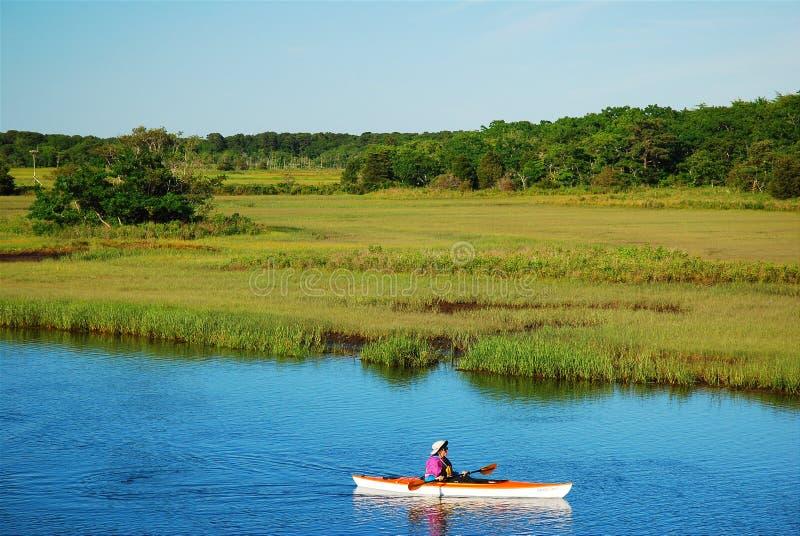 Kayaking till och med träsket royaltyfria bilder
