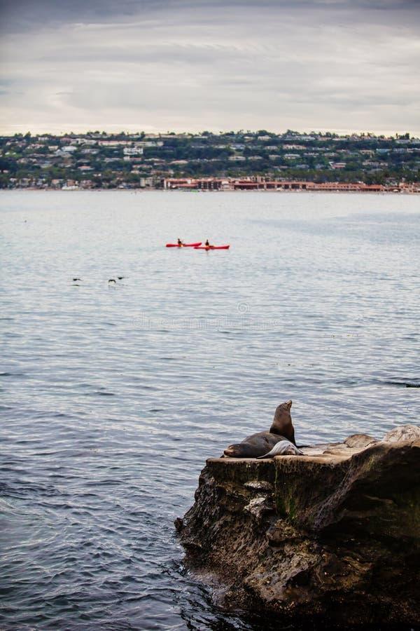 Kayaks de La Jolla images stock