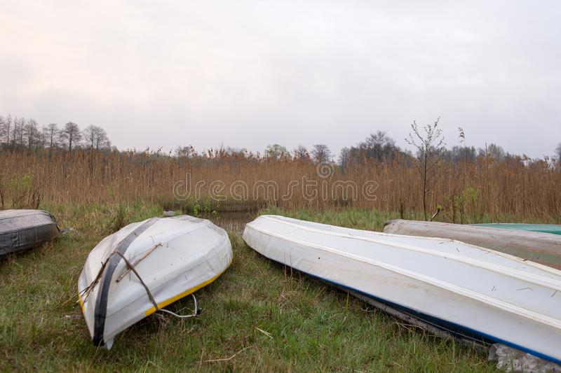 Kayaks of water tourists during a halt in the camp. Morning swampy meadow surrounded by dry reed. Nature of Volyn in May royalty free stock photography