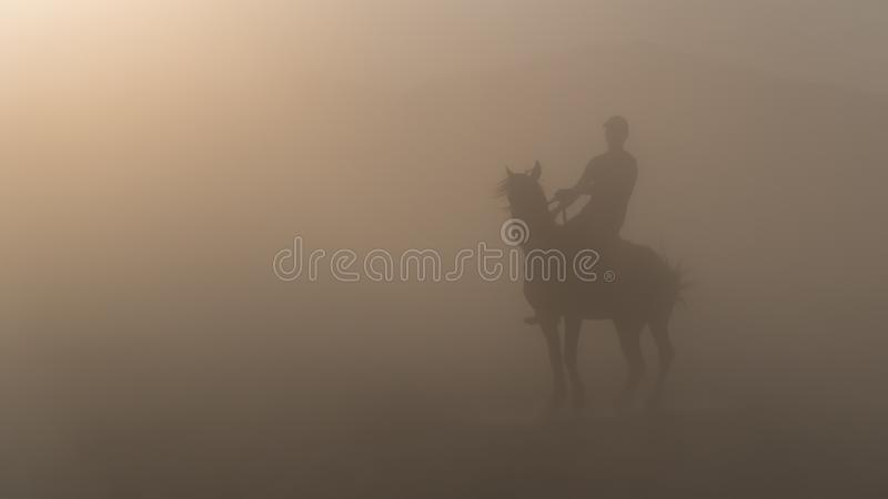 Man on a horse silhouette standing in dust royalty free stock photo
