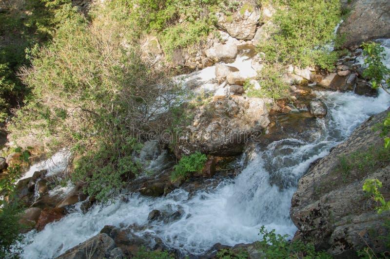 Kazachstan, de Tien Shan-bergen Trans-Ili Alatau Hoge plat royalty-vrije stock foto's