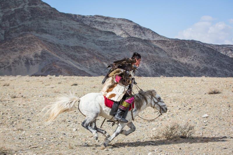Kazakh eagle hunter on his horse stock photography