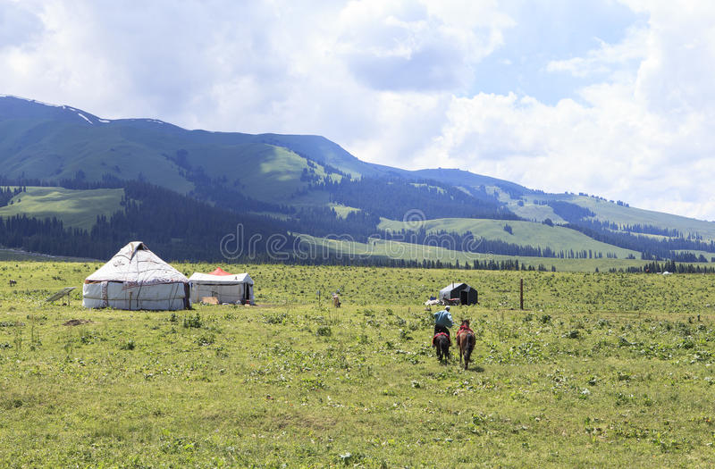 Kazakh yurt camp in Meadow of Xinjiang, China stock photo
