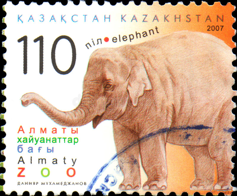 KAZAKHSTAN - CIRCA 2007: Postal stamp printed in Kazakhstan shows elephant. Almaty Zoo royalty free stock photo