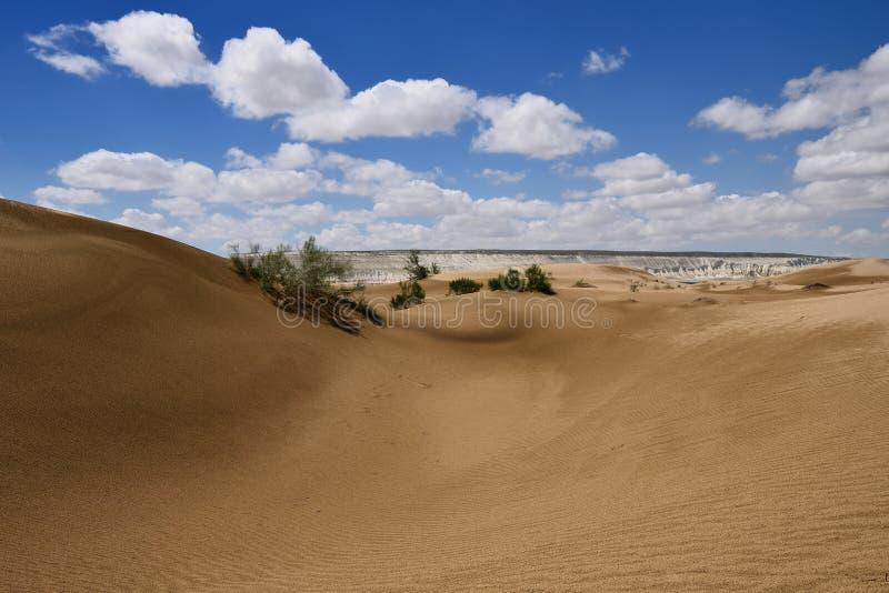 Kazakhstan,.Desert landscapes, Mangystau province. Kazakhstan, Ustyurt plateau, Beautiful dunes desert on the steppe landscapes close the Aktau, Mangystau stock image