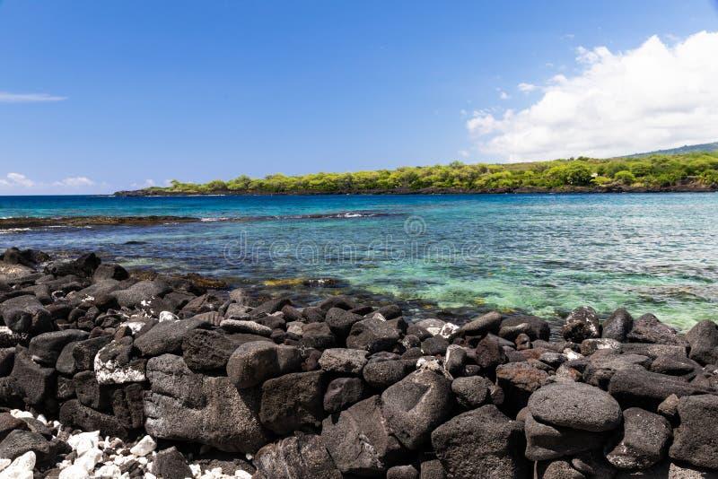 kealakekua海湾看法在夏威夷的大岛的;青绿色水,与绿色植物的海岸线在背景中 免版税库存照片