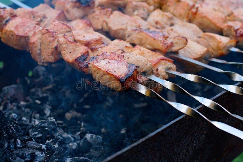 Download Kebab imagem de stock. Imagem de carne, barbecue, kebab - 12805439