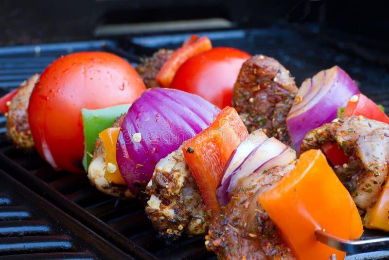 Download Kebabs Da Galinha E Da Pimenta Que Cozinham Lentamente Imagem de Stock - Imagem de outdoors, fresco: 26519755