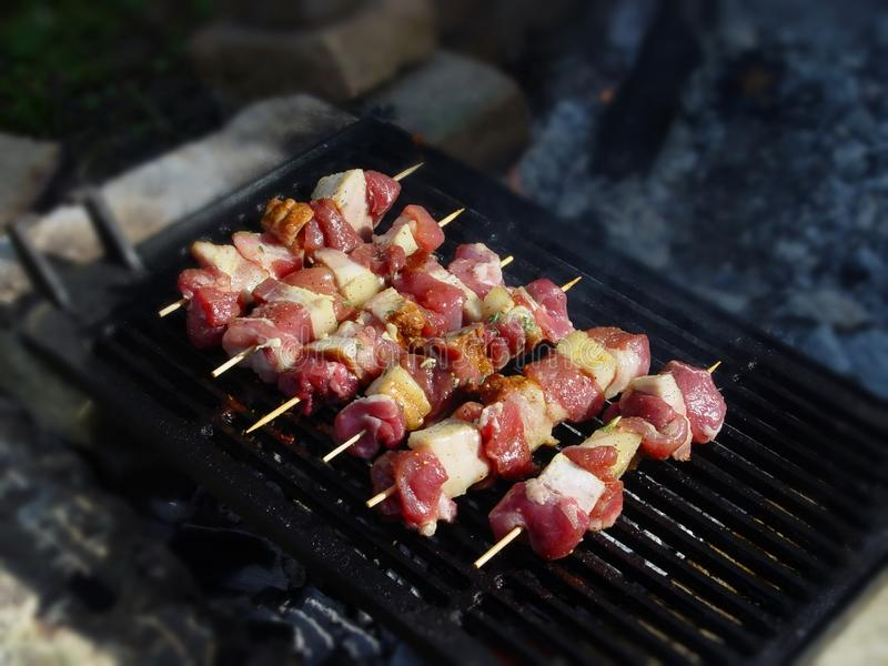 Kebabs sorted and ready for roasting on a spit. Fresh kebabs grill sorted and ready for roasting on a spit, makeshift barbecue, most delicious meal ever cooked royalty free stock photo