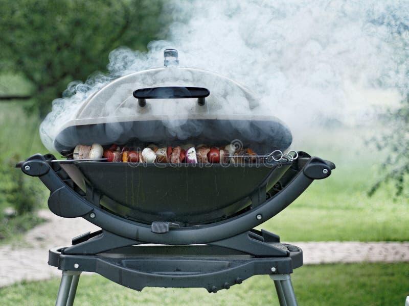 Kebaby na Dymić Plenerowego grilla obrazy stock