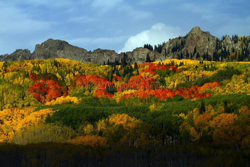 Kebler Pass in Autumn Near Vail, Colorado. Aspen in red, orange and yellow royalty free stock photography
