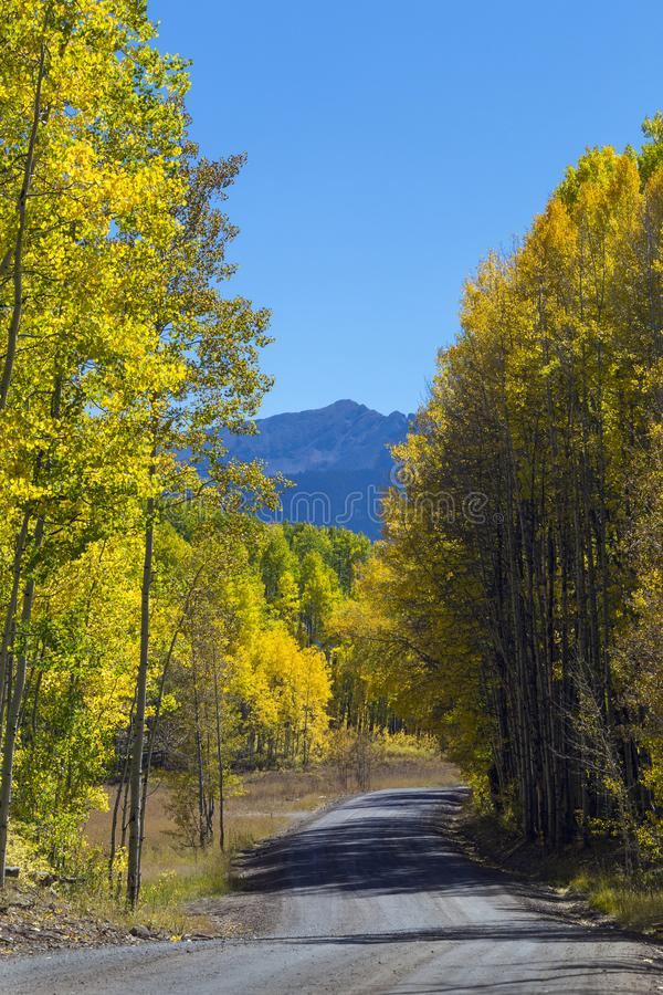 Fall Colors Kebler Pass Near Crested Butte, Colorado Rocky Mountains. Kebler Pass Near Crested Butte, Colorado Rocky Mountains.  Fall colors on Kebler Pass stock image