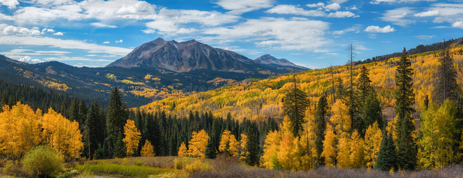 Kebler Pass Panorama in autumn. Colorful trees at Kebler Pass in Colorado royalty free stock image
