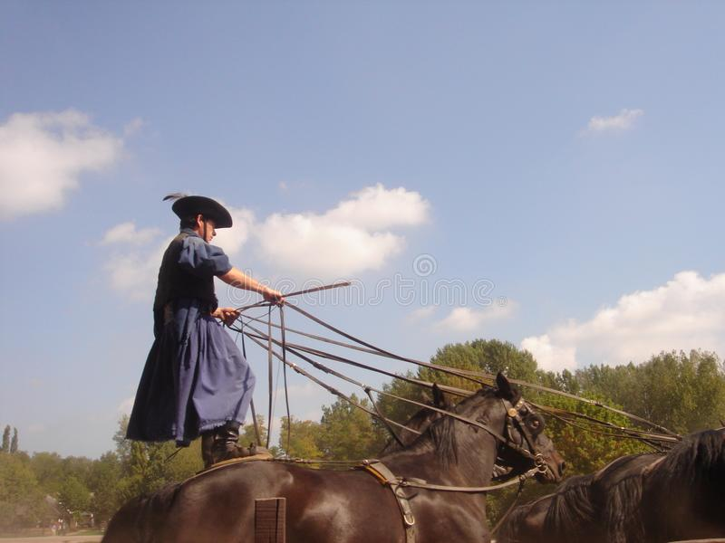 Kecskemét, condado del cs-Kiskun del ¡de BÃ, Hungría: Gran viaje llano de Puszta con la demostración tradicional del caballo fotografía de archivo libre de regalías